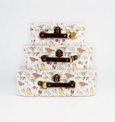 3 British Birds Suitcase Set Storage Boxes