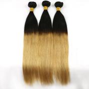 Cheap Brazilian Ombre Virgin Hair Straight Weft 3 Bundles 30cm TwoTone 100% Human Hair Extensions T1B/27# Colour